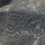 Lignes de Nazca - UFE Pérou